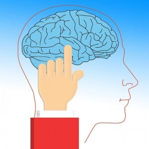 brain-628736_960_720
