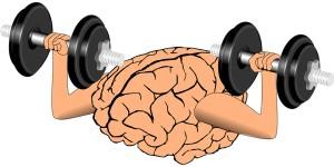 brain-1295128_960_720