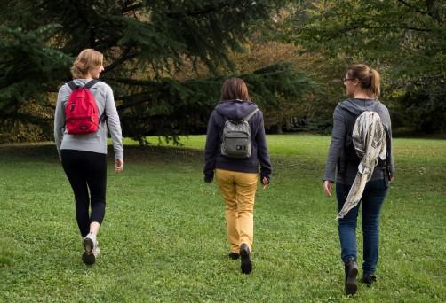 Le Camminate Consapevoli